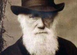 Чарльз Дарвин украл теорию эволюции?