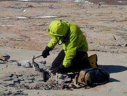 Археологи обнаружили следы древней антарктической рептилии