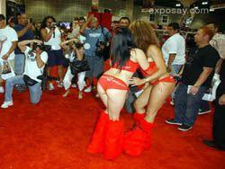 Erotica LAВ - эротическая выставка в Лос-Анджелисе