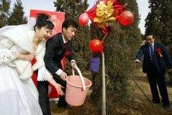 В Пекине в день открытия Олимпиады ожидается свадебный бум