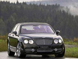 Bentley приобрел спортивную форму