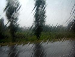 За час в Калмыкии выпала полугодовая норма дождевых осадков
