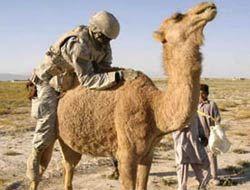 В Ираке пропало $23 млрд. из госсредств США