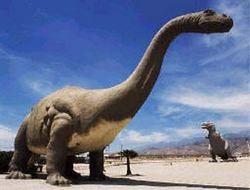 Динозавры ходили друг к другу в гости