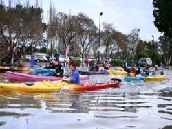 Как европейцы справляются с наводнением?