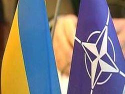 27% украинцев против вступления в НАТО