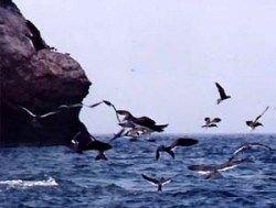 У берегов Британии в море найдена церковь