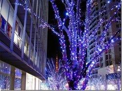 Йокогама - город мечты