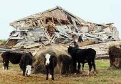 При присоединении к ВТО отстоять господдержку агропрома не удастся