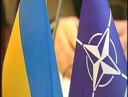 Брюссель ищет благовидный предлог, чтобы отказать Украине в присоединении к НАТО