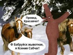 Госдуме предложили наказывать журналистов за вульгаризмы