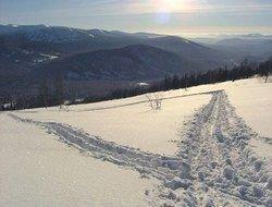 Шведы приглашают на лыжню в летний сезон