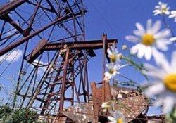 Нефтедобыча в мае не сумела выйти из депрессии