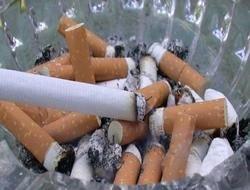 771 тонна сигаретных окурков ежегодно попадает в озера и моря