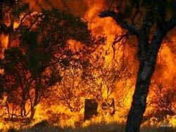 Калифорния опять горит