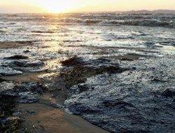 В сторону Анапы плывет огромное пятно мазута