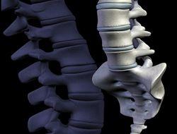 Нейрофизиологи научились восстанавливать поврежденный спинной мозг