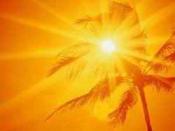 В Арабских Эмиратах будут штрафовать за работу на дневной жаре