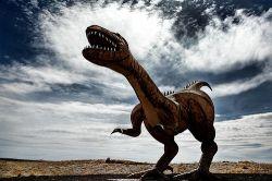 Учeные поняли, из-за чего вымирают виды