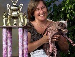 Самого уродливого в мире пса вылечат от рака