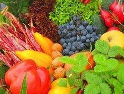 В этом году сезонный фактор не проявится в ценах на овощи и фрукты