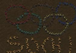 Абхазия поможет России в проведении Олимпиады