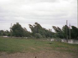 Ураган на Украине: погибли четыре человека