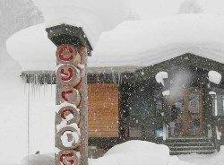 Снегопад вызвал хаос в Новой Зеландии