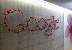 Google уважают больше Microsoft