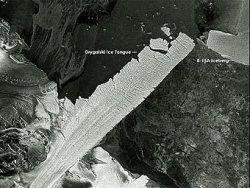 """Ученые объяснили рост антарктического \""""языка\"""""""