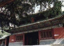 Храм Шаолиня открыл свой онлайн-магазин