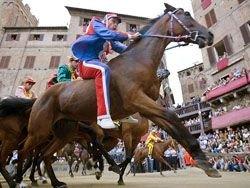 Лошадиные скачки The Palio of Siena