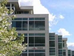 Microsoft купит поисковик Powerset за $100 млн.?