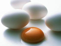 Самый тяжелый способ разбить яйцо