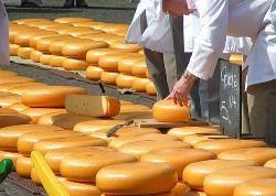 В Россию возвращается литовский сыр