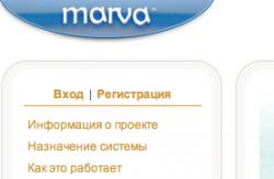 Marva поможет общаться с потребителем в Сети