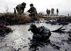 Керченский пролив продолжает загрязняться нефтепродуктами