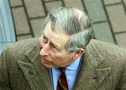 Фонд недвижимости принца Чарльза поддержит экологию