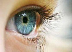 Работоспособность человека зависит от цвета глаз