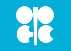 ОПЕК не может повлиять на рост цен на нефть