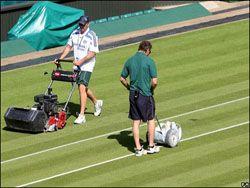 Уимблдон без теннисистов