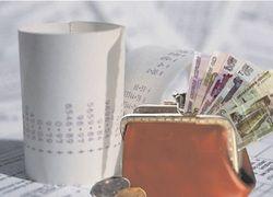 Госдума приняла закон о специальных налоговых режимах