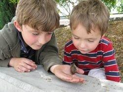 Почему любопытство полезно и как его развивать