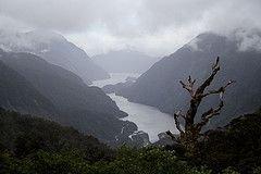 Новую Зеландию накрыл сильнейший ураган