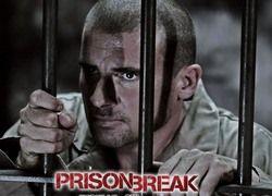 Поклонник Prison Break заплатит за просмотр фильма 31 000 фунтов