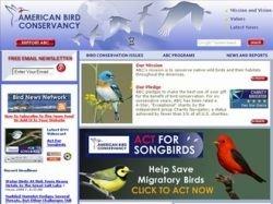 Миллионы птиц ежегодно гибнут из-за вышек мобильных сетей связи