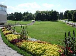 В Москве в честь Дня семьи можно бесплатно посетить музеи и парки