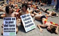 Акция протеста защитников животных в Памлоне