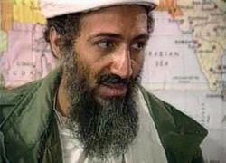 """Болельщики \""""Ньюкасла\"""" протестуют против покупки клуба Бен Ладенами"""