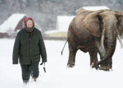 Какие регионы РФ станут первыми жертвами изменения климата?
